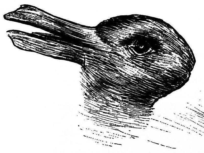 アヒルとウサギのだまし絵