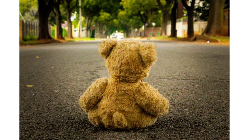 遠くを見るクマのぬいぐるみの写真