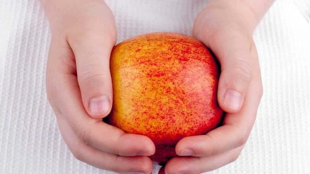 子供とリンゴの写真