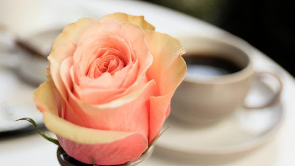 花とコーヒーの写真