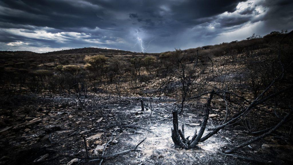 生態系破壊のイメージ